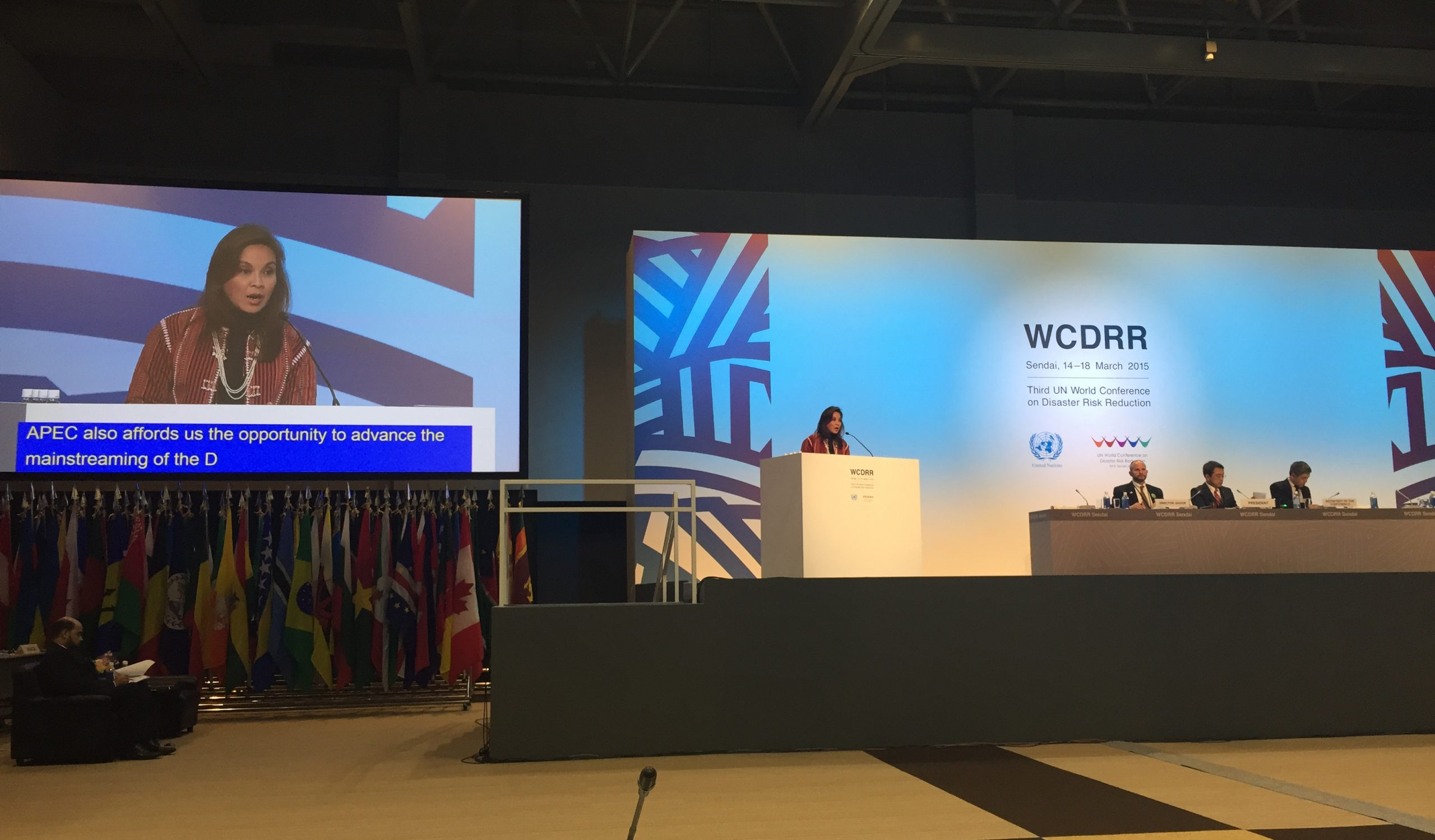 Legarda Delivers PHL Statement at 3rd WCDRR