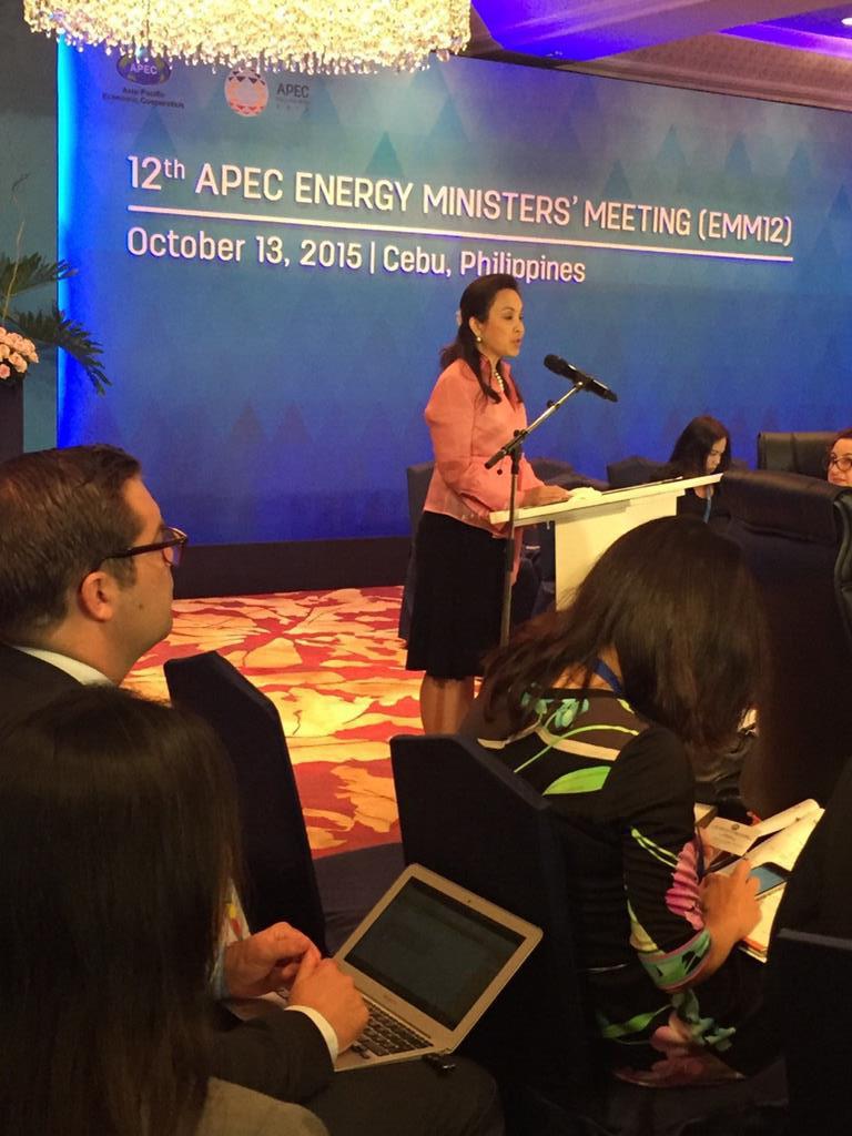 Senator Legarda at 12th APEC Energy Ministers' Meeting