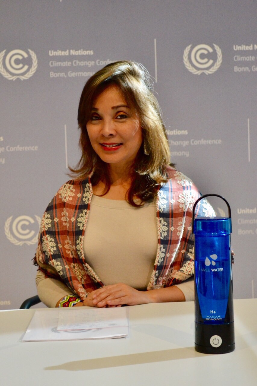 """In Session Workshop on Long-Term Climate Finance"""" organized by the United Nations Framework Convention on Climate Change (UNFCCC)"""